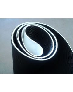 gym 2 ply commercial belt